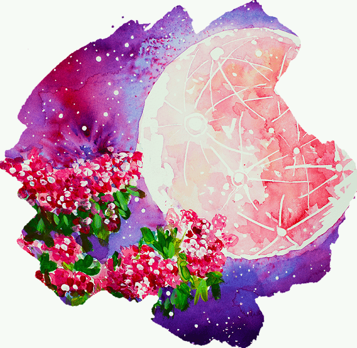 Flower Moon Print and Card