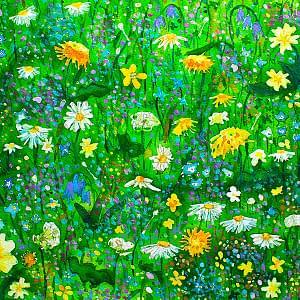 Flowers & Plants